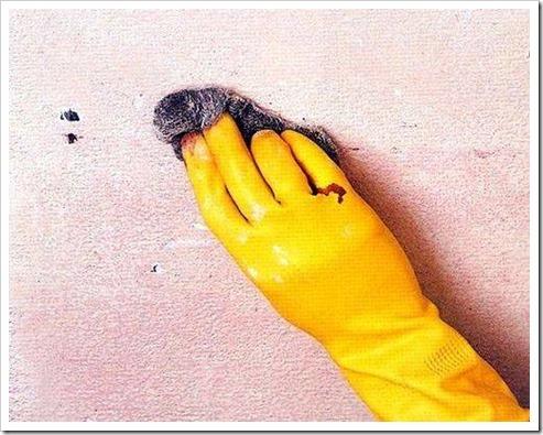 Очистка потолка от водоэмульсионной краски