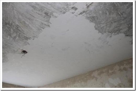 Чем шпаклевать потолок в ванной?